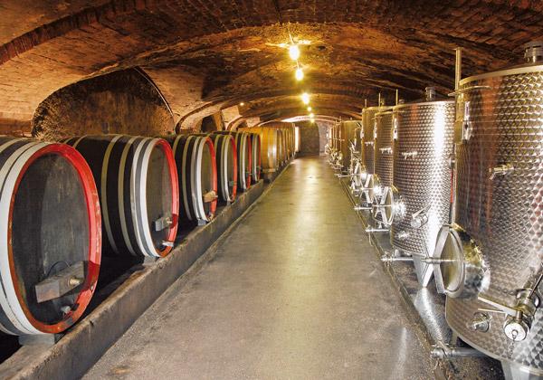 02 Tanque vinho